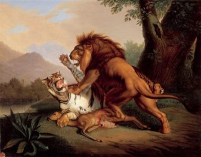 Wenzel, Johann Peter - Gevecht tussen leeuw en tijger