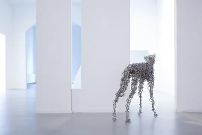 Bergen, Corinne van - Greyhound